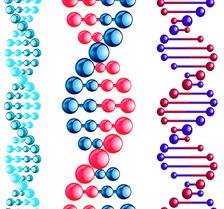 Фрагментация ДНК