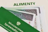 Заявление на уменьшение алиментов